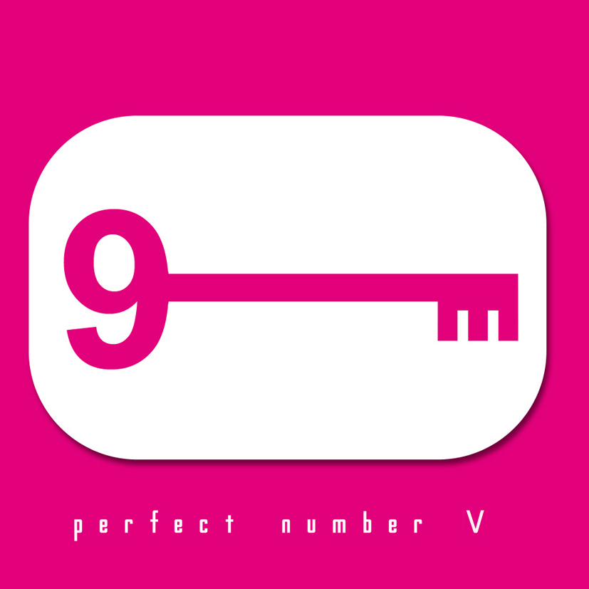 Perfect Number V
